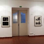 Výstava: Renáta Fučíková Svět v ilustracích_5