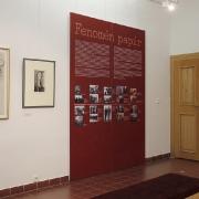 Stálá expozice Fenomén papír