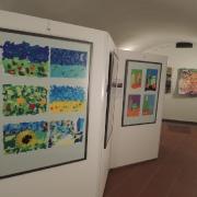 Výstava 2015 - Lekníny