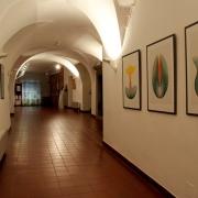 Výstava Světlo nitra_1