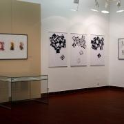 Výstava Světlo nitra_2