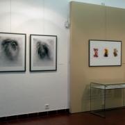 Výstava Světlo nitra_3