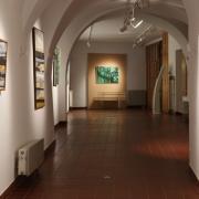 Vernisáž výstavy Josefa Sasky SÍLA BARVY_17