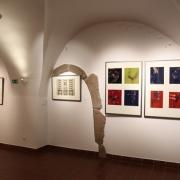 Vernisáž výstavy Milana Meda KRÁSA POHYBU_8