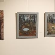 Pohled do výstavy Petrkov v nás aneb pocta Bohuslavu Reynkovi_3