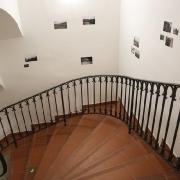 Pohled do výstavy ... Na Vaška! Hommage à Václav Černoch_1