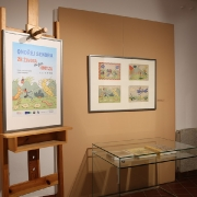Pohled od výstavy_6